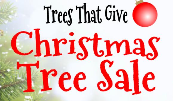 Tree-Sale-WORDS-GRAPHIC-1024x751